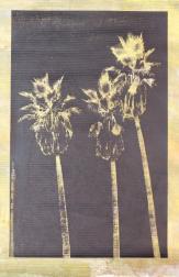 Marco Pittori: Canvas Palm Tree